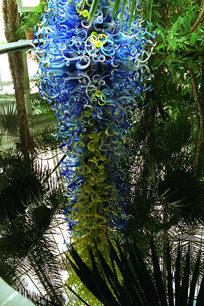 Glass installation by Dale Chihuly, photo by Fred Hatt, 2006